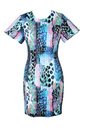 1 Wonderlust Dress w S
